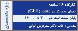 دومین دوره درمان متمرکز بر شفقت (CFT)