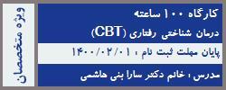 سی و چهارمین دوره کامل CBT درمان شناختی رفتاری 100 ساعته-40% تخفیف(نیمه فشرده)